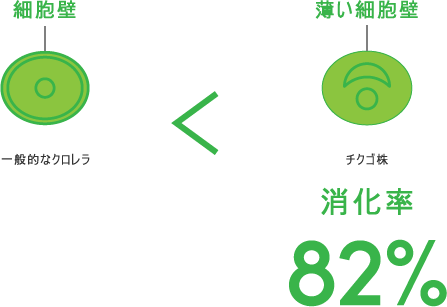一般的なクロレラ < チクゴ株(消化率 82%)