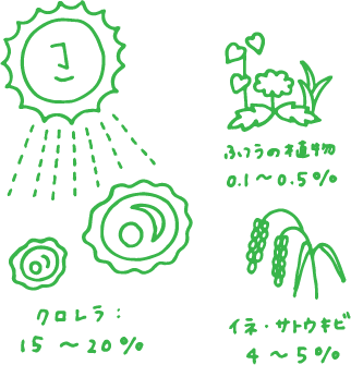 """クロレラの""""太陽光エネルギー"""" 変換効率は?20%"""