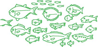 今日の食卓に並ぶかも?約70種類の魚