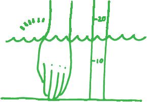 屋外培養プールの培養液の深さは?10cm〜15cm