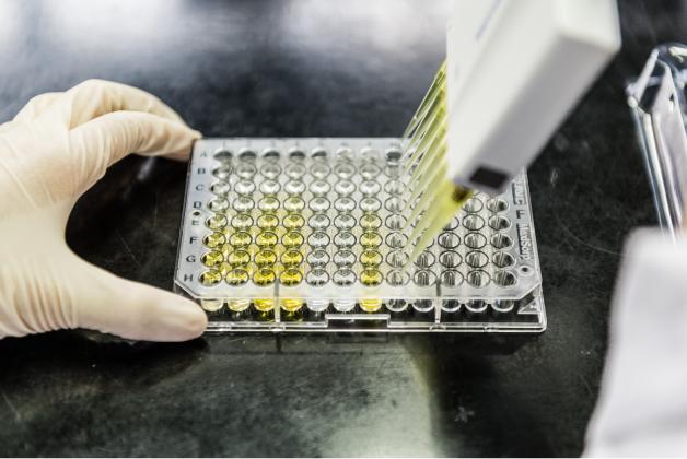 クロレラ工業の技術力