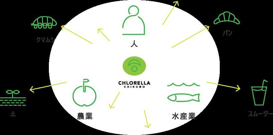 クロレラをあらゆる食分野へ